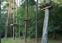 """Linowy Park Przygody - """"Małpi Gaj"""" znajduje się na terenie uroczyska Zimne Doły koło Zalesia Górnego"""