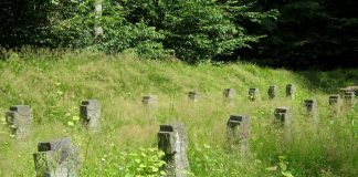 Cmentarz wojenny z okresu I wojny światowej w Jesówce