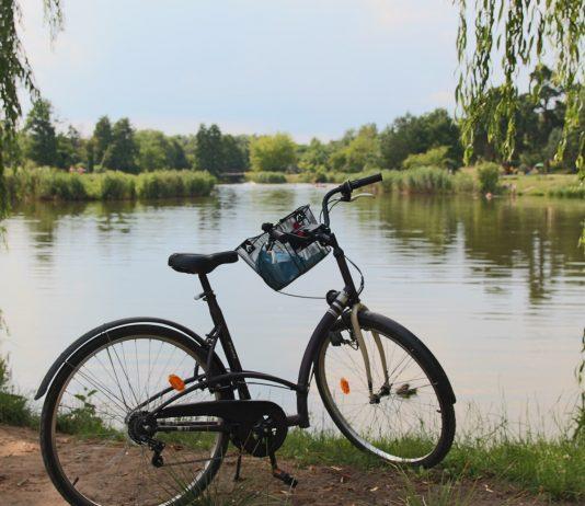 Rowerowe szlaki turystyczne wokół Piaseczna