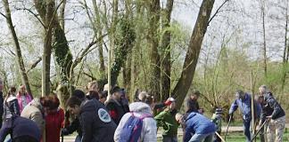 Społeczna akcja sadzenia drzew na Górkach Szymona