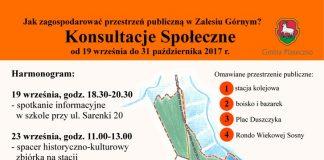 Konsultacje w Zalesiu Górnym