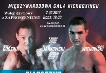 fight night plakat