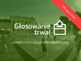 głosowanie Budżet