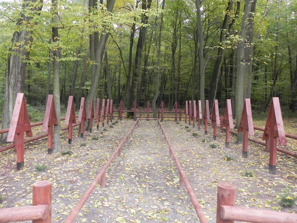 Cmentarz w Złotokłosie - widok ogólny, foto Piotr Prawucki, 16 X 2016 r.