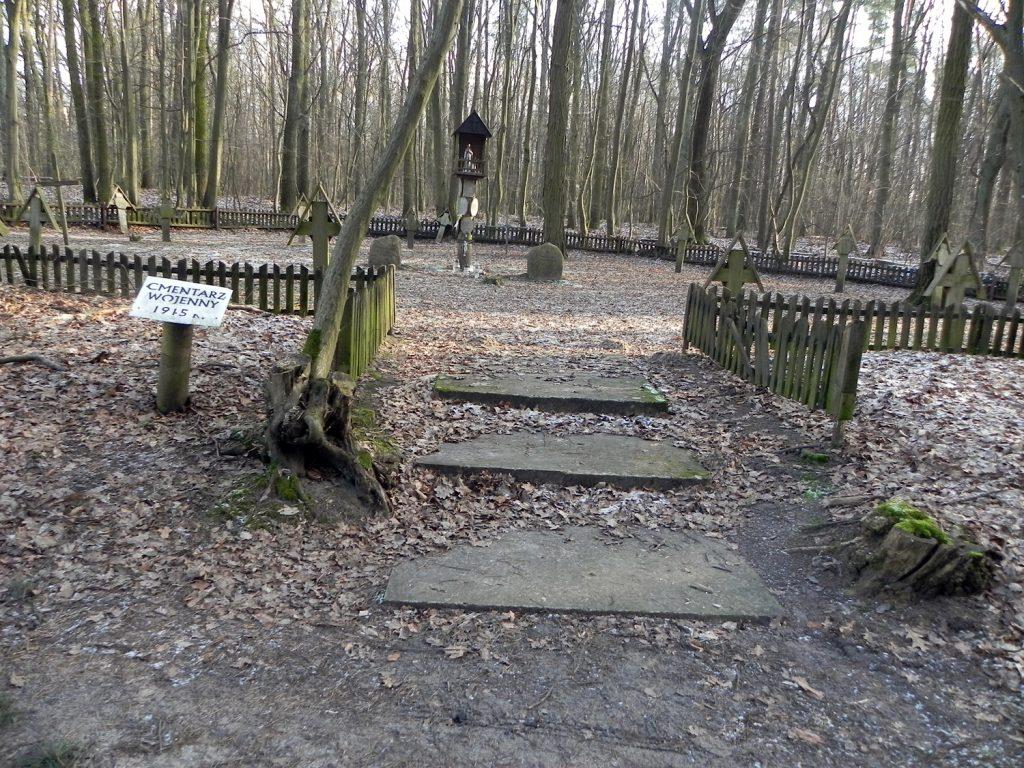 Cmentarz w lesie Pęcherskim - widok ogólny, foto Piotr Prawucki, 15 I 2018 r.