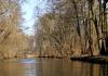 Spływy kajakowe rzeką Jeziorką