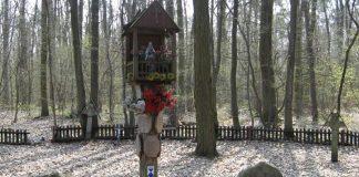 Cmentarz wojenny z okresu I wojny światowej