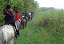 Klub Turystyki Jeździeckiej PTTK