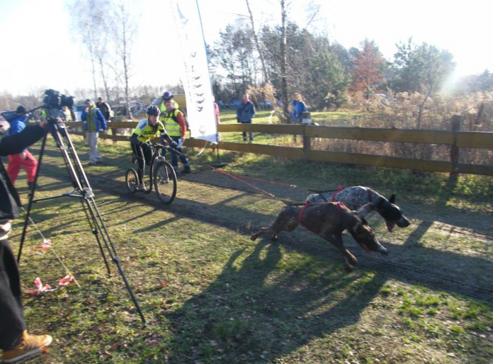 wyścigi psich zaprzęgów - foto arch. Park Adrenaliny i Westernu Runów