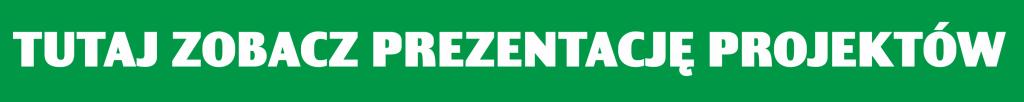 Prezentacja prac finałowych na logo