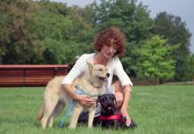 Przygarnij psa ze schroniska - odpłaci ci się miłością