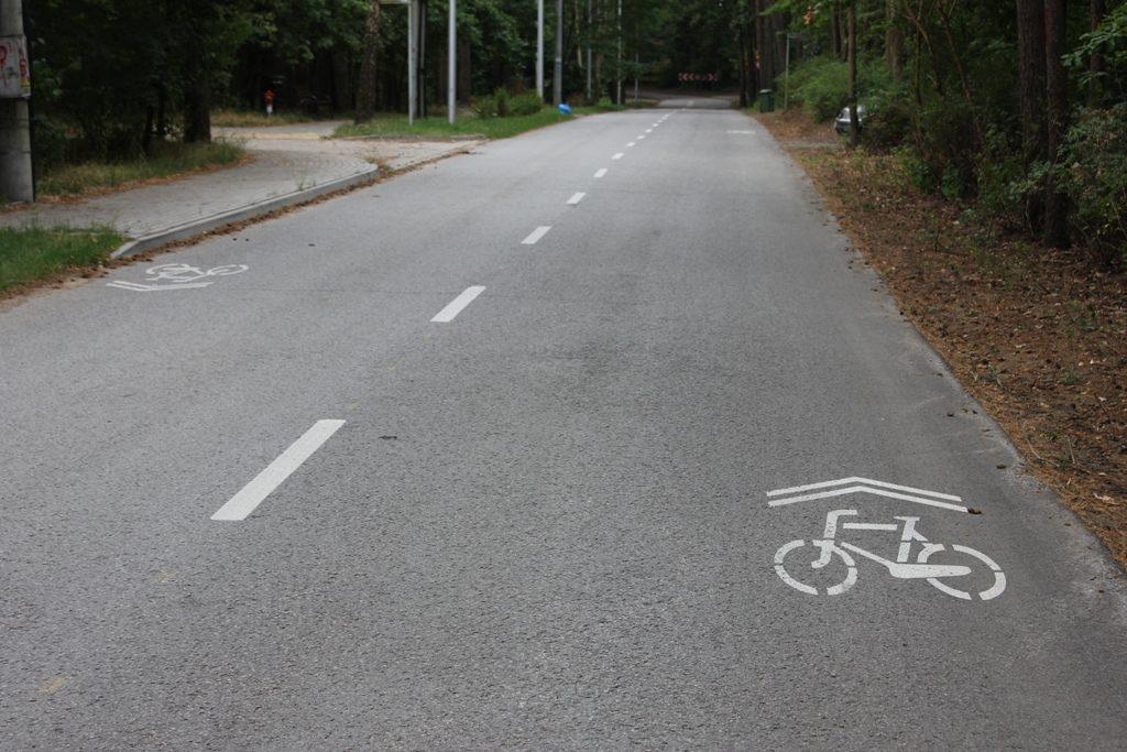 Wytyczona trasa dla rowerów na ul. Jesionowej w Zalesiu Górnym, foto: Michał Baran