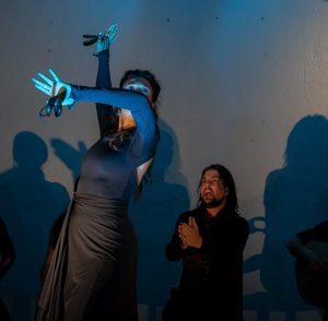 Flamenco Con Otro Sol