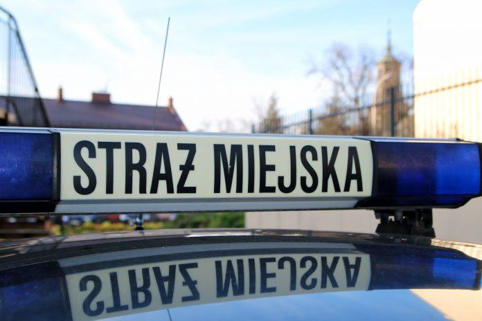 Straż Miejska samochód