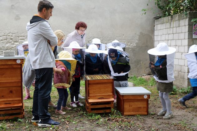 Gminne pszczółki w Piasecznie