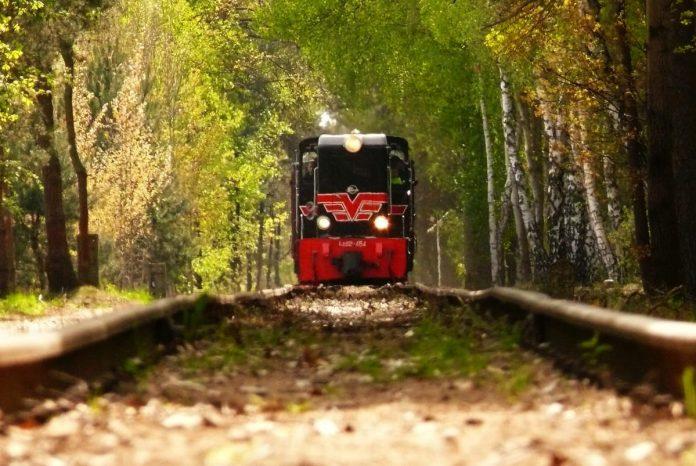 Ścieżka historyczna na Piaseczyńskiej Kolejce Wąskotorowej