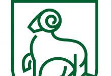 Piaseczno dla klimatu - logo