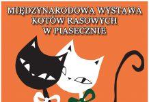 Międzynarodowa Wystawa Kotów Rasowych Piaseczno 2020
