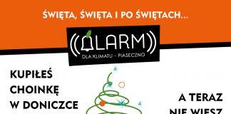 Alarm dla Klimatu Piaseczno adoptuje świąteczne drzewka