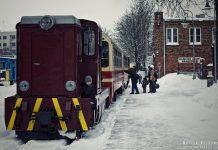 Pociąg do ferii - zimowa wycieczka koleją wąskotorową