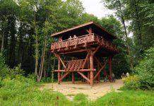 Wieża obserwacyjna Chojnowskiego Parku Krajobrazowego, foto: Arkadiusz Strzyżewski