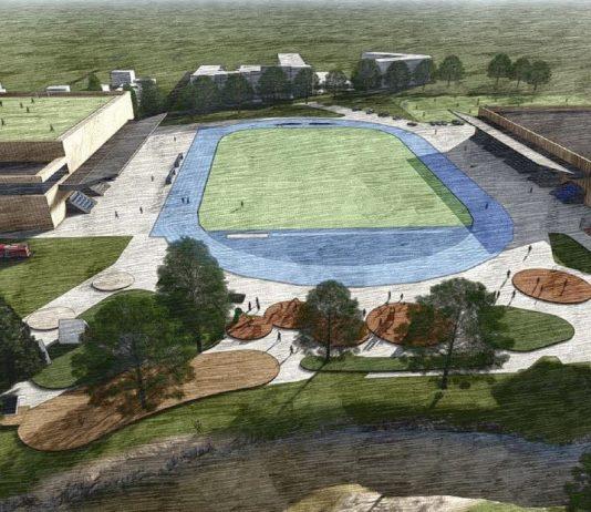 Projekt koncepcji hali widowiskowo-sportowej modernizacja terenów sportowych przy al. Kalin w Piasecznie