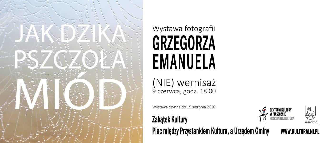 Jak Dzika Pszczoła Miód - wystawa fotograficzna Grzegorza Emanuela