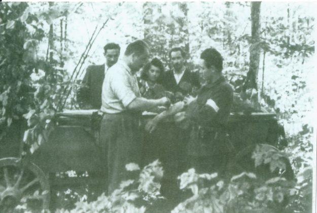 Lasy Chojnowskie
