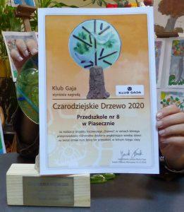 Ilustracja. Przedszkole nr 8 laureatem konkursu ekologicznego Czarodziejskie drzewo