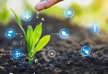 Ilustracja. Do 15 lutego 2021 roku można zgłaszać uwagi do projektu Planu Strategicznego dla Wspólnej Polityki Rolnej