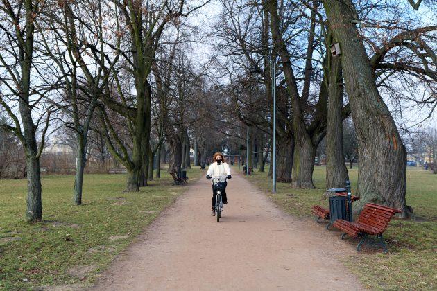 Ilustracja. Rowerem po Piasecznie - park miejski w Piasecznie
