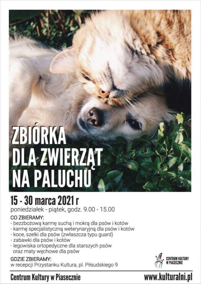 Zbiórka dla zwierząt na Paluchu