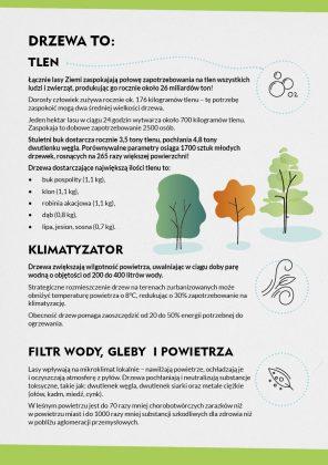 Co nam dają drzewa - ulotka Alarmu dla Klimatu Piaseczno