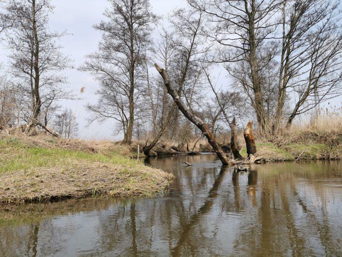 rzeka Jeziorka - akcja sprzątania rzeki odbędzie się 17 kwietnia 2021