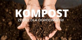 Ilustracja. Kompost - złoto dla ogrodników