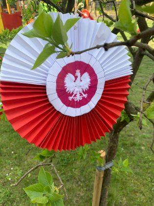 Ilustracja. Na zdjęciu kotylion biało-czerowny, w środku orzeł biały.Kotylion wisi na drzewie.