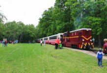 Ilustracja. Postój kolei na polanie w Runowie. Otwarcie sezonu wycieczek zabytkowej kolei wąskotorowej 2021. Foto Piaseczyńsko-Grójecka Kolej Wąskotorowa