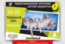 MIĘDZYNARODOWA WYSTAWA KOTÓW RASOWYCH w Piasecznie